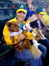 Dog Day 2009 #4